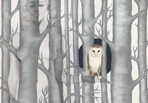 emma_hack_owl_in_woods